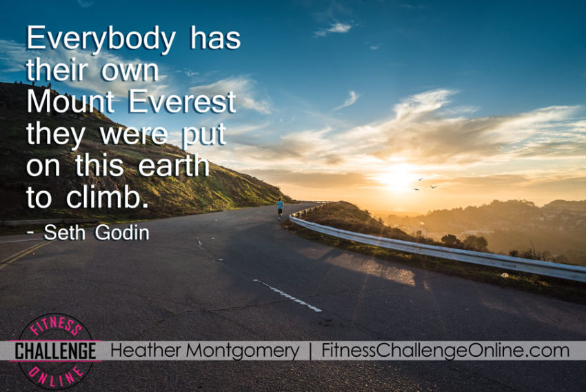 Everybody has their own Mount Everest they were put on this earth to climb - image quote
