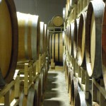 Making Wine Requires Stepping Out of Your Comfort Zone To Live This Dream Life