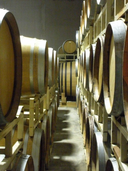 Making Wine: French oak barrels in the cellar