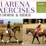 How I Improved the Conditioning of My Horse