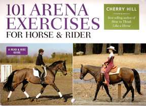 101 Arena exercises for your horse