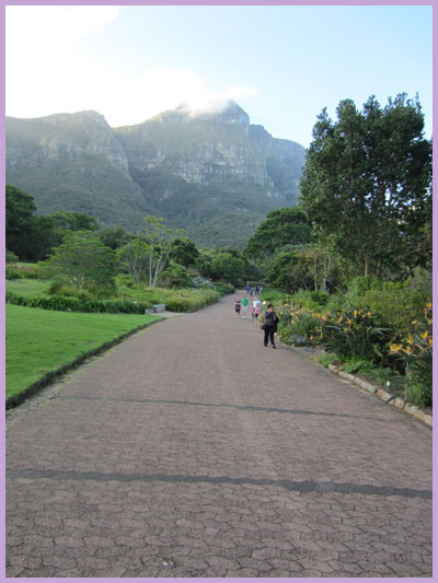 World Heritage Sites in South Africa: Kirstenbosch garden path