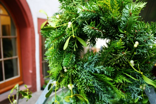 Enjoy Evergreen Travel Dreams During Winter Solstice: Basel Christmas Evergreens