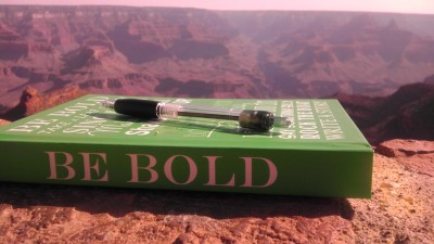 How I Accomplished a Big Dream in a Year: Be Bold Book