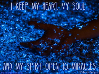 World Travel Dreams; A spirit open to miracles quote