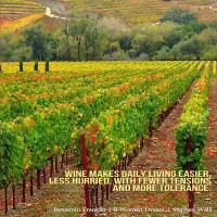 Dream Travel to the Heart of the California Wine Country