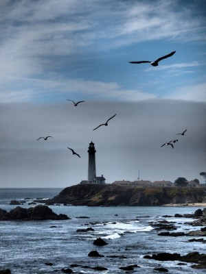 California Dreamin Photographs: California Highway 1 Lighthouse