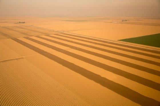 California Drought Interrupts Dream Progress