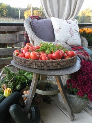 Autumn vineyard-garden goodies