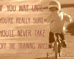 A First Step Toward a Big Dream Involved Training Wheels