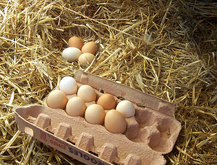 Bag the Supermarket: Free-range Eggs
