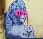 Gorilla Banksy Dumb Behavior - Again!