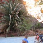 Havasupai Falls: A Grand Canyon Travel Dream Part II