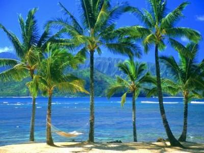 Kauai Paradise Shot