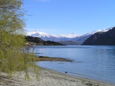 Embark on a New Dream: Lake Wanaka, New Zealand