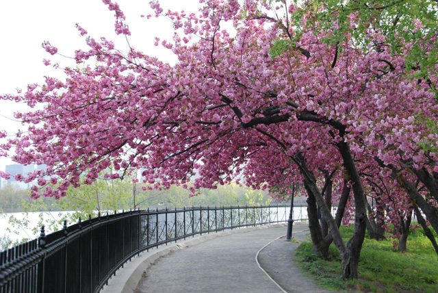 Spring in Action: 92 Days To Change Your Life - NY in Spring on the Hudson River