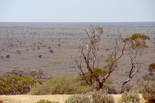 Great Railway Journeys: the vastness of the Nullabor Plain