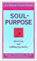 Soul Purpose by Mark Thurston a find your life passion book