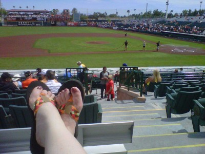 Images of Spring Training Dreams: View from the bleachers