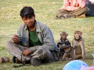 Street-entertainer-in-Delhi-India