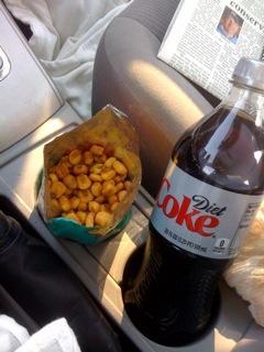 The Genius Diet - Road Trip