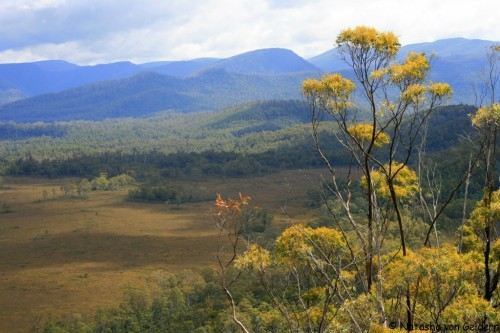 World Travel Dreams: The Western Wilderness of Tasmania