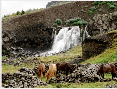 Twenty Something Travel To Iceland