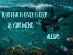 New Help For Using Fear to Your Advantage to Make Your Dreams Come True