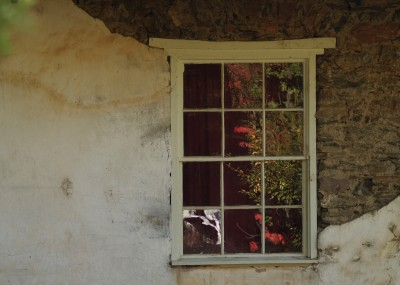Dream Images Inspired by California Wine Country: Fall window in Northern California