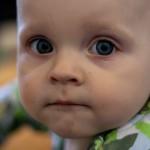 Financial Recovery Dreams Involve No More Babies?