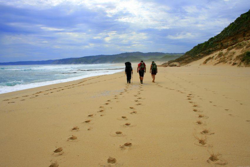 Best Travel Photos from the World Wandering Kiwi: Great Ocean Walk Australia