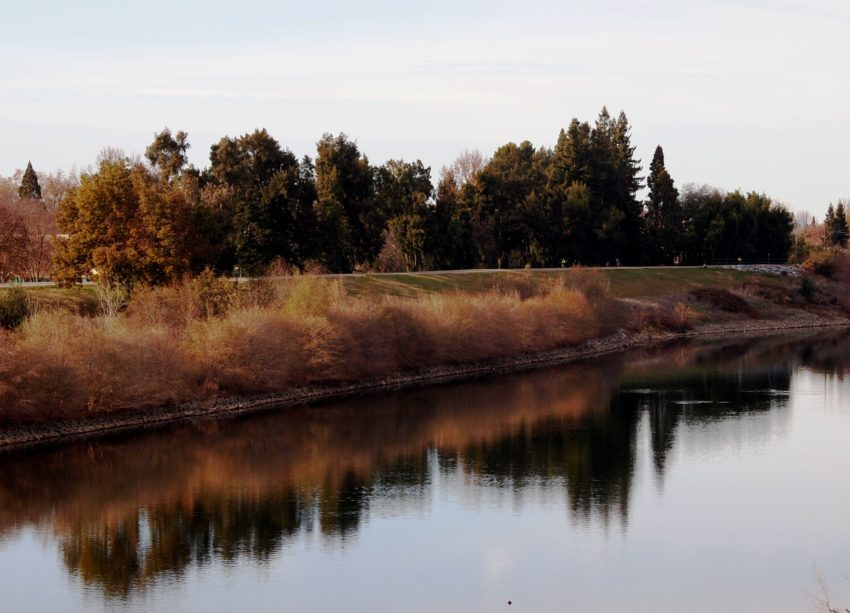Wordless Wednesday: Images of Winter in Northern California
