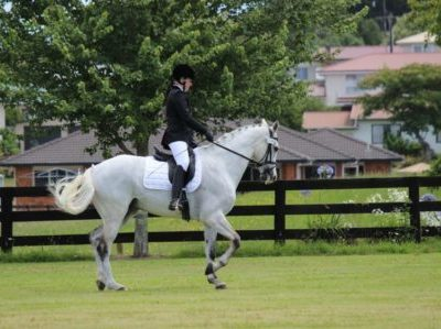 'I Can Do It' Objects to Help with my Equestrian Dream