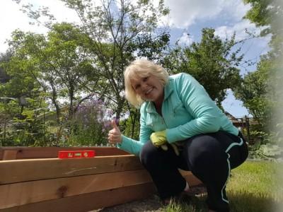 After Divorce: Building my first garden