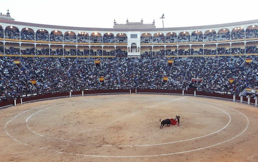 8 Must-Sees on a European Dream Vacation: Bullfight Torero Corrida Arena Fight Spain Madrid