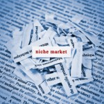 Guy Kawasaki: Find Your Niche To Find Your Dream