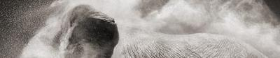 Top Photographers In The World For Photography Dreamers: Nick Brandt