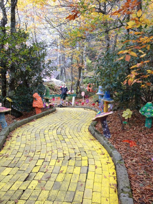 Every Successful Motivational Speaker Has A Different Business Plan and Model - The Yellow Brick Road to Success