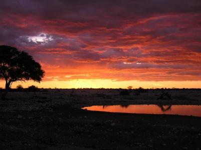 Rhino Africa Travel Destinations: Etosha Waterhole Sunset in Namibia by Natasha vonGeldern World Wandering Kiwi
