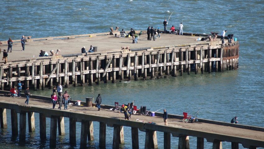 Wordless Wednesday: SF Bay Pier San Francisco Adventures