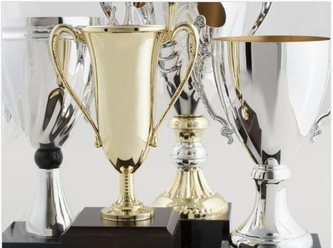 Top 8 Blogs By Women: Trophies