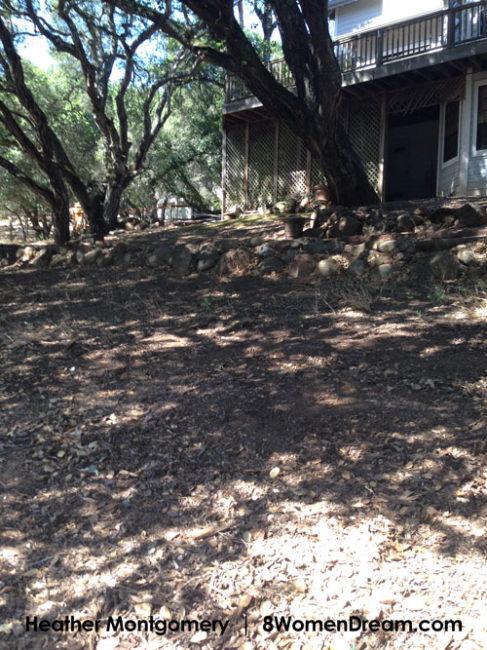 Yard work workout - shoveling leaves